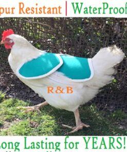 Elasticated Chicken Saddle Apron Cape Hen protector Waterproof POULET WINGS Tail PROTECTION Canvas Bantam Small Medium Large Cockerel Cotton