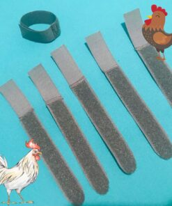 Cockerel Rooster Quiet Collar No Crow Anti Noise Neck Band Tie Chicken Duck Hen Poultry Turkey Cock Crowing Stop Backyard One Size