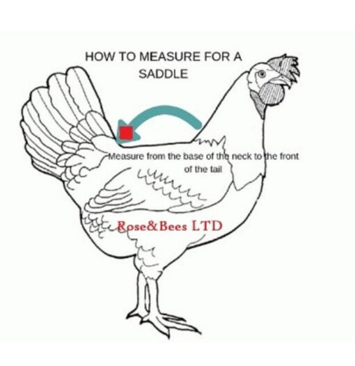 Chicken Saddle With Belly Strap Apron Hen protector Adjustable Waterproof snaps POULET PROTECTION Canvas Bantam XS S M L Cockerel Cotton